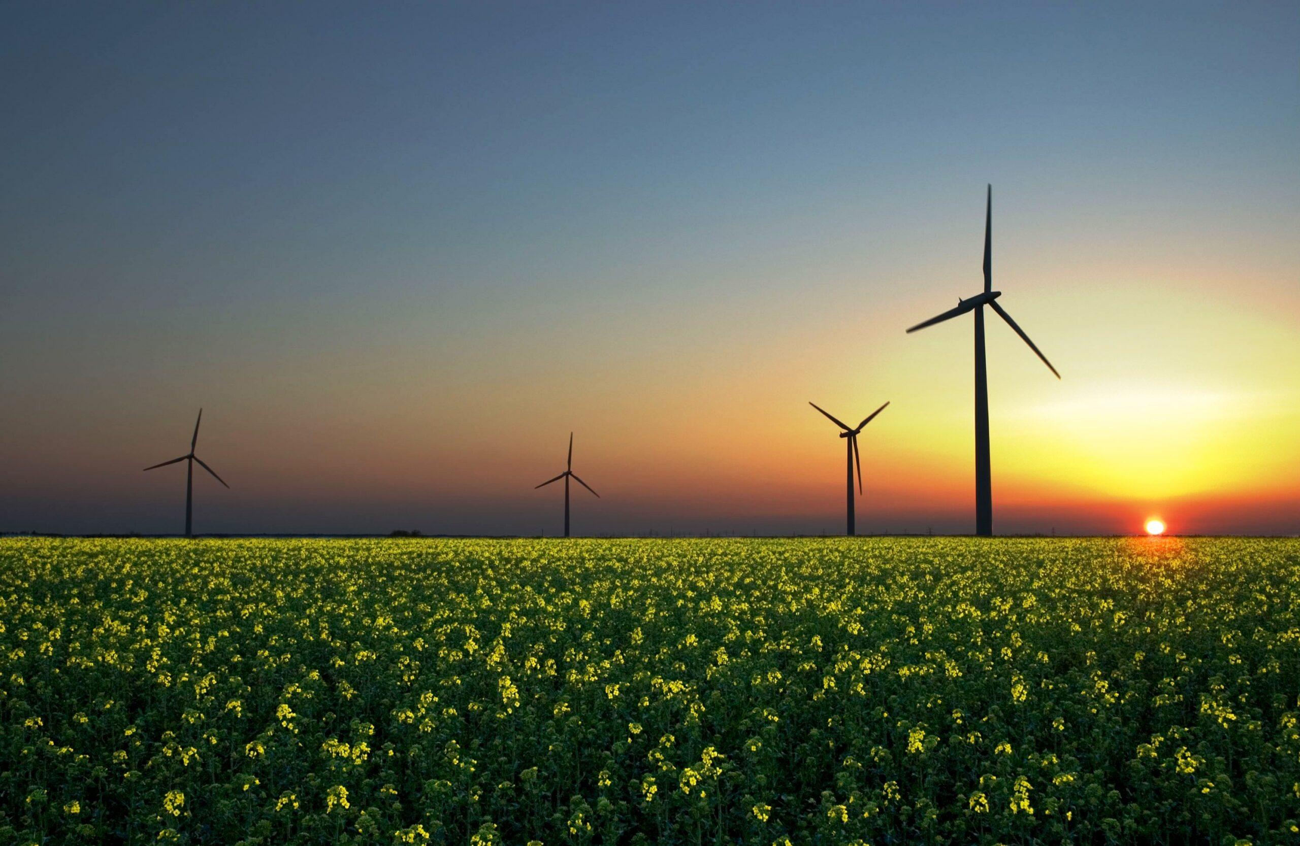 energy smartis